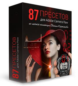��������� «87 �������� ��� Adobe Camera Raw»